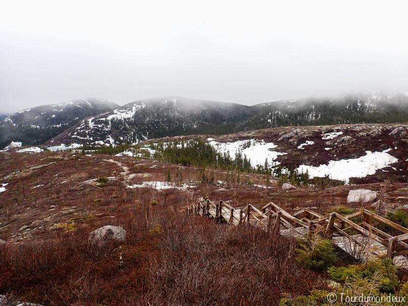 randonnée-lac-des-cygnes-québec