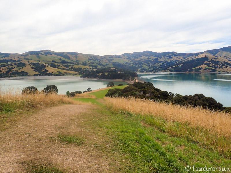 akaroa-peninsula-nouvelle-zelande