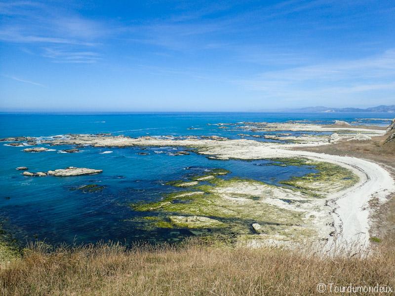 kaikoura-chemin-nouvelle-zelande