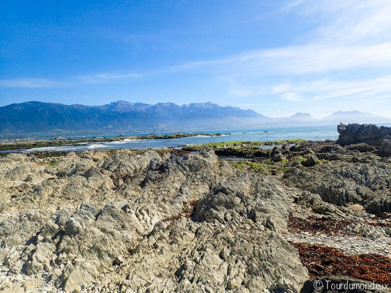 kaikoura-roches-nouvelle-zelande
