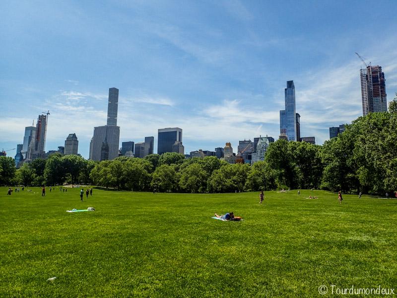 new-york-central-park-herbe-usa