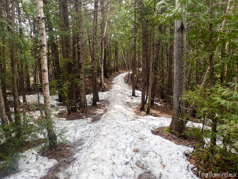 chemin-neige-gaspésie-québec