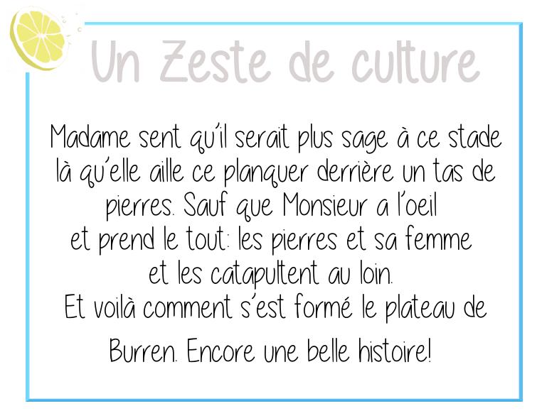 Zeste de culture-burren-2